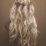 Braid-Hairstyle-Pictures-10