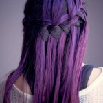 Braid-Hairstyle-Pictures-13