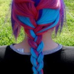 Braid-Hairstyle-Pictures-5