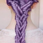 Braid-Hairstyle-Pictures-9