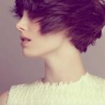 Short-Haircuts-for-Thick-Hair-17
