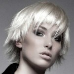 Short-Blonde-Haircuts-for-2014-2015_15