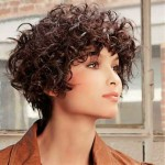 Short-Bob-for-Frizzy-Curly-Dark-Brown-Hair