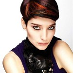 20-Short-Hair-Color-Trends-2014_11