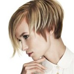 20-Short-Hair-Color-Trends-2014_12