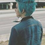 Short-Hair-Blue