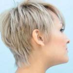 capellicorti3-14112015-2