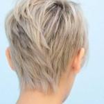capellicorti3-14112015-8