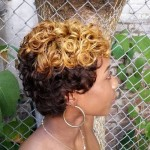20-short-curly-hairstyle-for-black-women