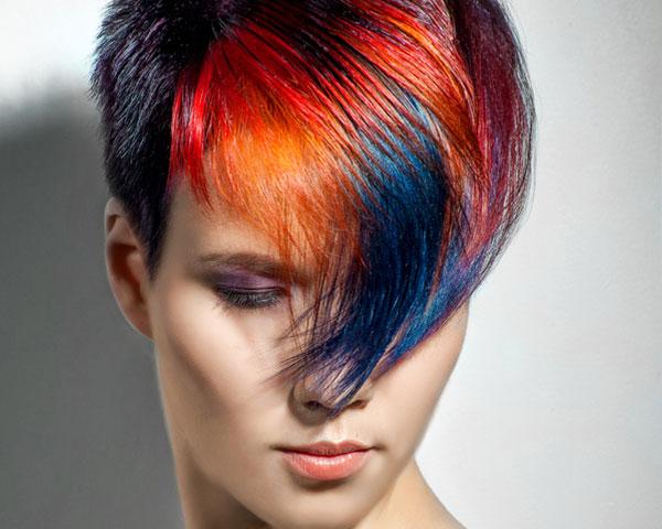 colori2016-25012016-06 colori2016-25012016-06