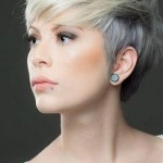 short-layered-fine-pixie-2016-500x704