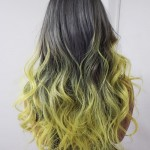 3-black-hair-with-gray-highlights-and-green-ombre