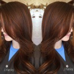 3-dark-brown-hair-with-subtle-red-highlights
