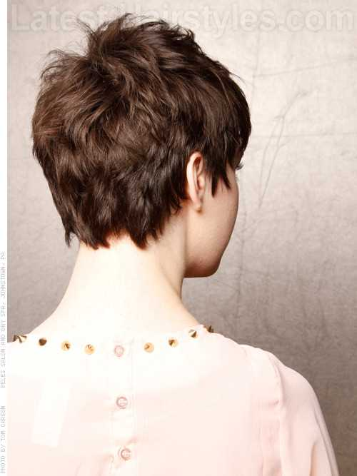indie-princess-simple-pixie-with-texture-back-view