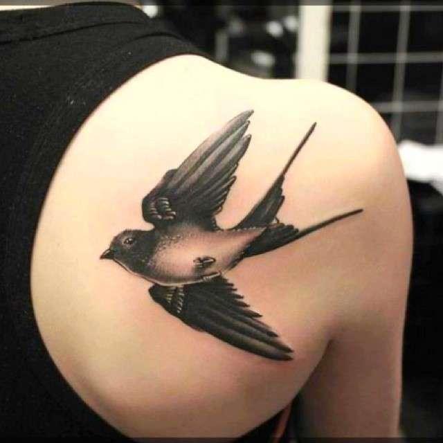 abbastanza Tatuaggi rondine: significato e foto! BW05