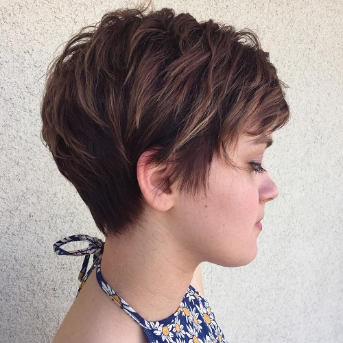 4-brown-feathered-pixie