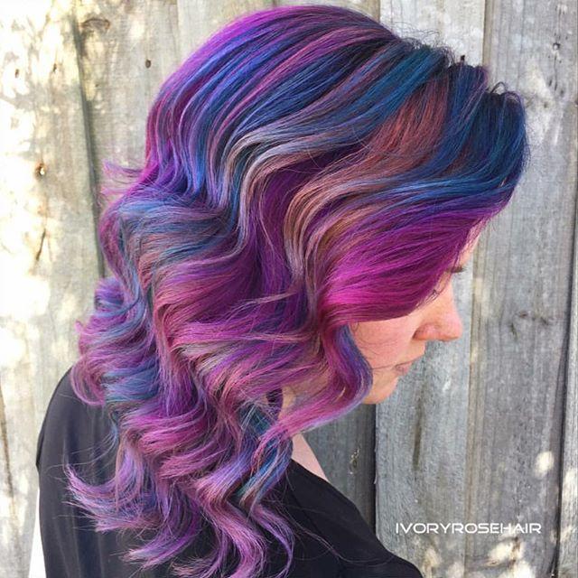 multicolor viola
