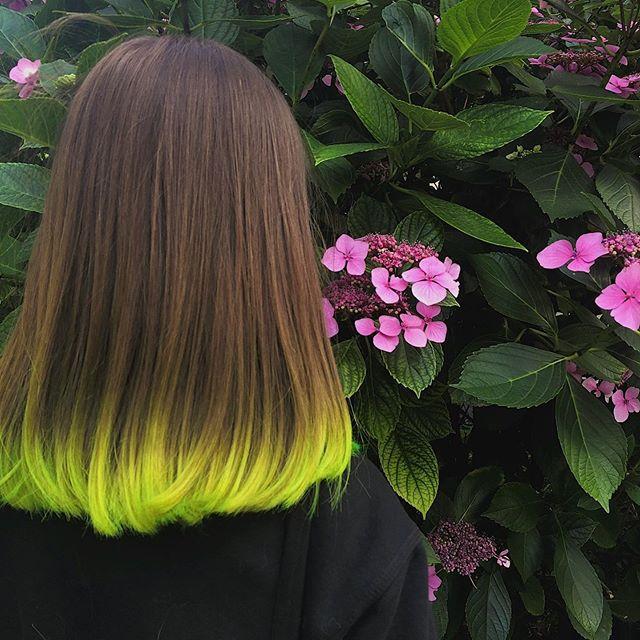 capelli multicolore