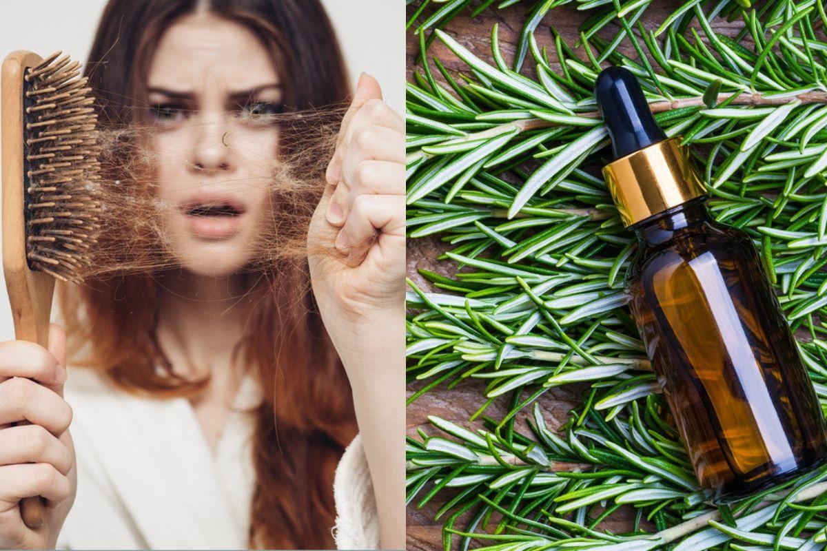 olio rosmarino contro la perdita di capelli