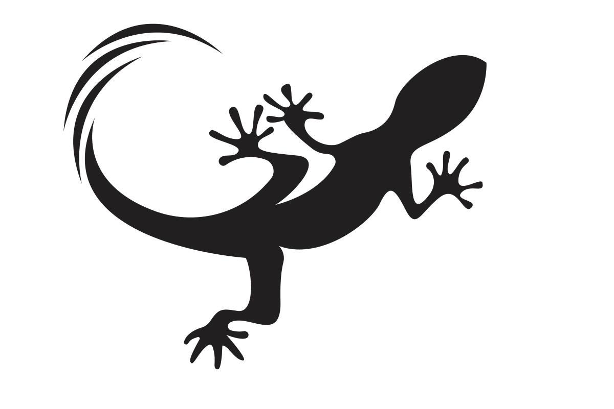 tatuaggio geco