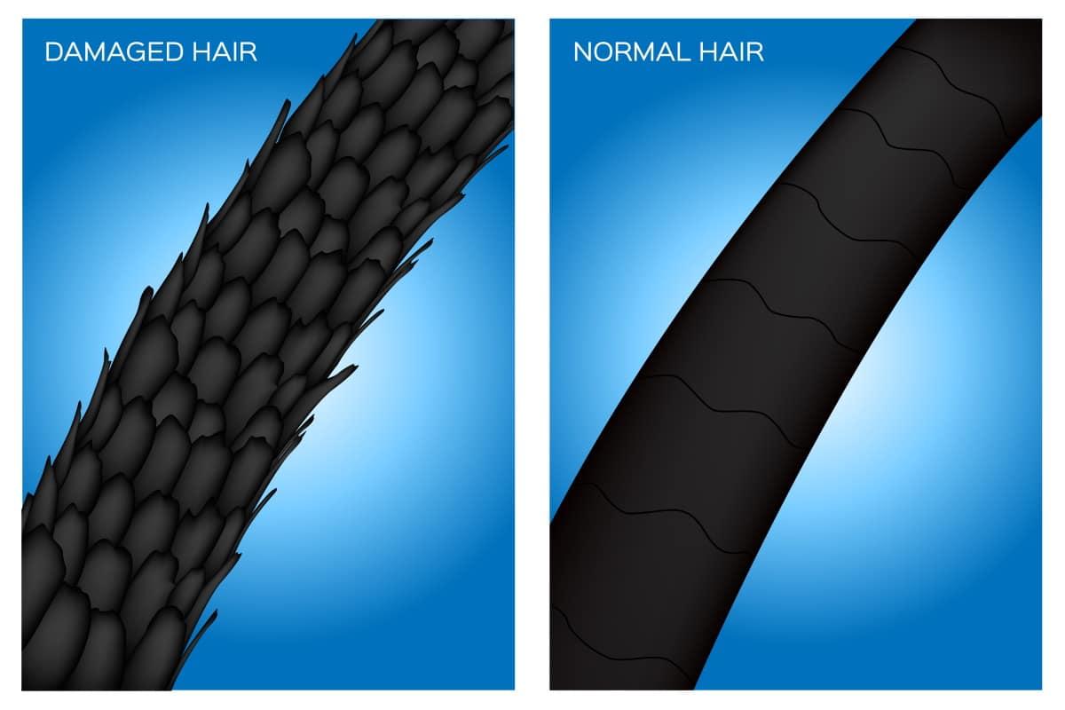 cuticole-capelli